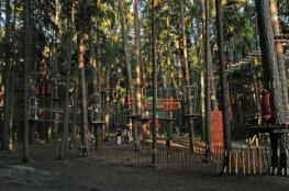 Olsztyn Atrakcja park linowy Leśny Park Linowy